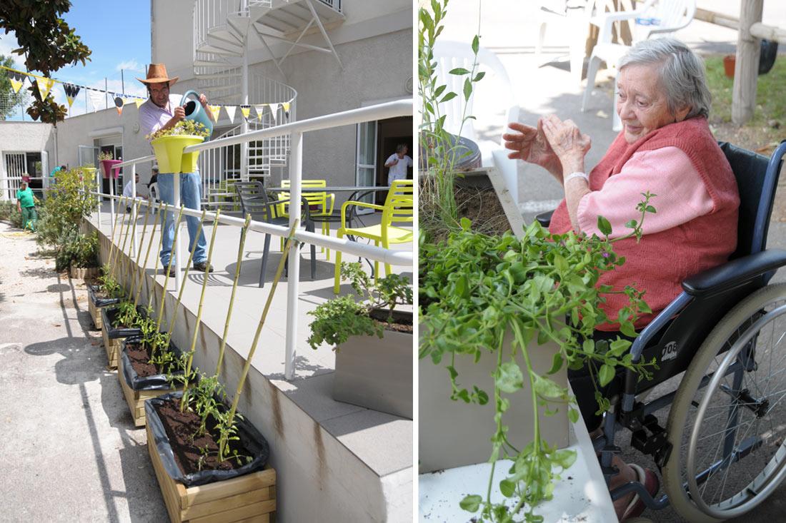 jardin-therapeutique-ssr-vds11.jpg