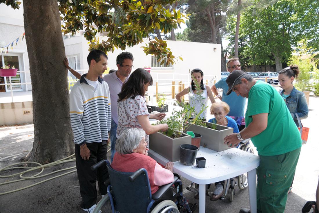 jardin-therapeutique-ssr-vds12.jpg