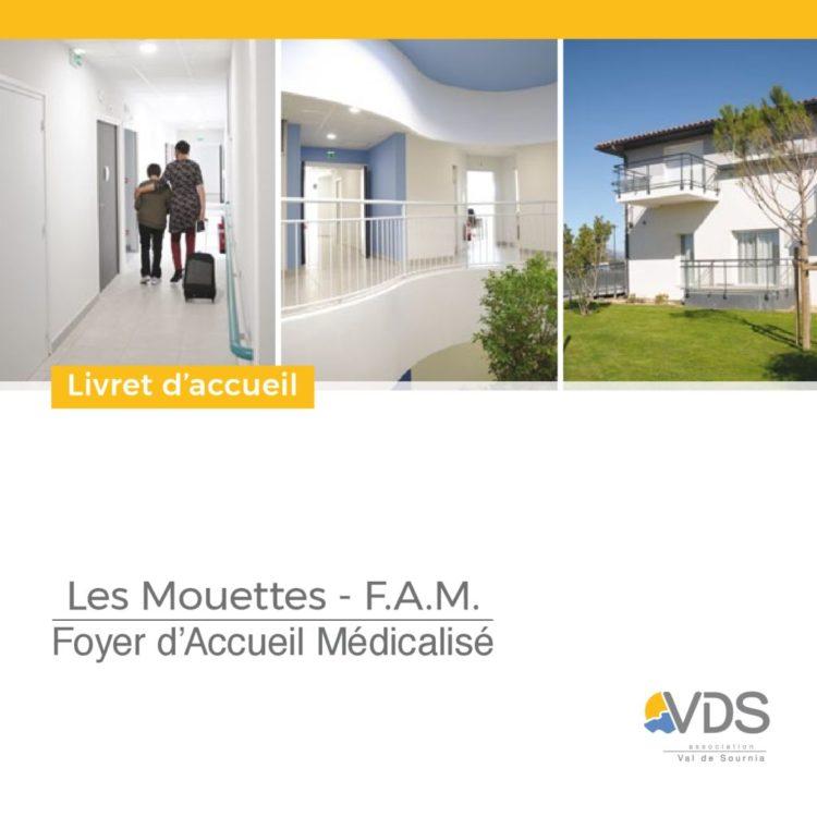 thumbnail of liv06-2017-lesmouettesclaira