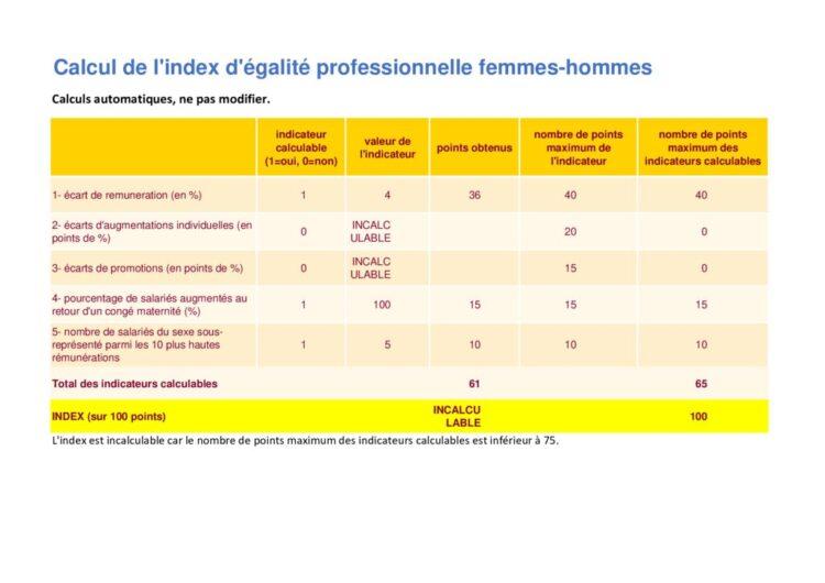 thumbnail of Outil_calcul_index_egalite_essai-salaire-brut-de-base